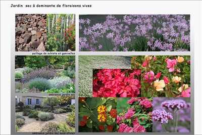 Exemple Paysagiste n°133 zone Hérault par Jean-Jacques