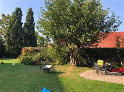 Exemple Entretien espace vert n°157 zone Pas de Calais par DAVID