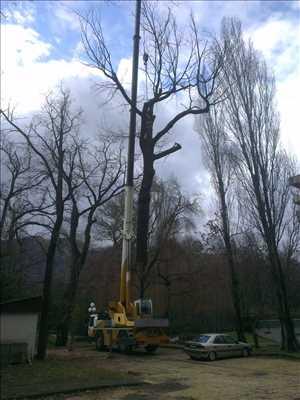 Photo Abattage d'arbre n°175 dans le département 38 par Victor