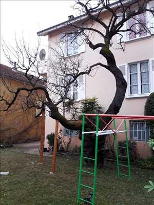 Photo Elagage d'arbre n°176 zone Isère par Victor