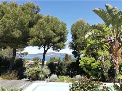 Photo Débroussaillage n°222 à Toulon par Cocoon Jardin