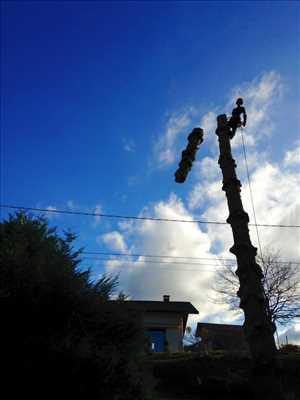 Photo Abattage d'arbre n°418 à Annecy par Haël