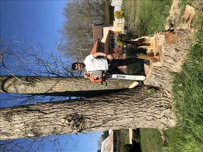 Photo Elagage d'arbre n°427 dans le département 80 par Georges