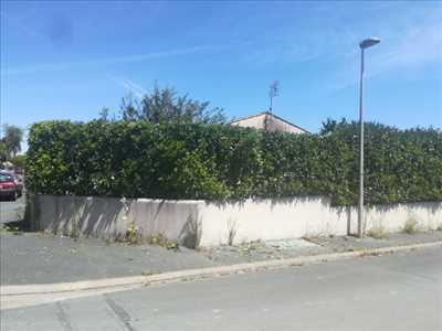 Exemple Taille de haie n°49 zone Charentes-Maritimes par Armony Gardens