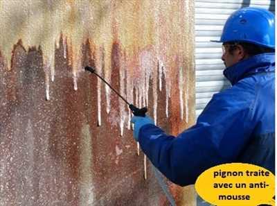 Photo Démoussage n°540 zone Pas de Calais par didier