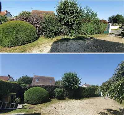 Photo entretien d'espace vert n°628 zone Loiret par maisonpropre45