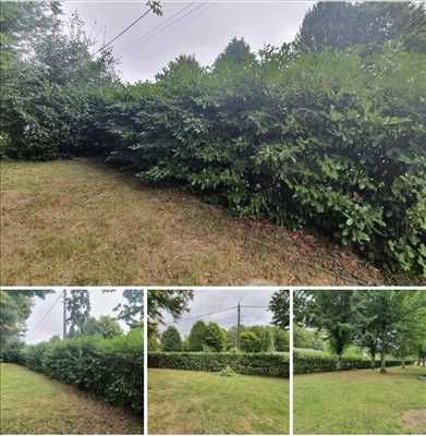 Exemple entretien d'espace vert n°629 zone Loiret par maisonpropre45