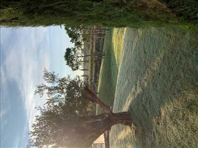 Photo Paysagiste n°80 zone Var par ES azur paysage